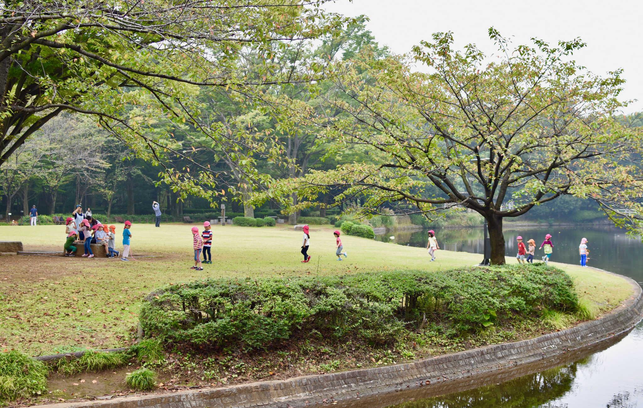 Parc Kitanomaru à Tokyo, un espace aux allures sauvages abritant l'ancienne Edo