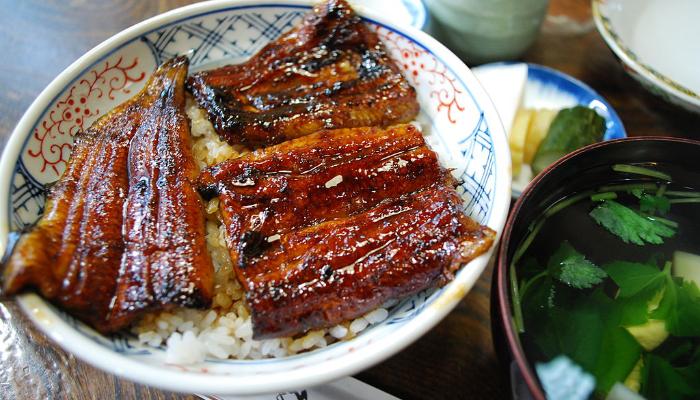 Anguille unagi, grillée et servie avec du riz