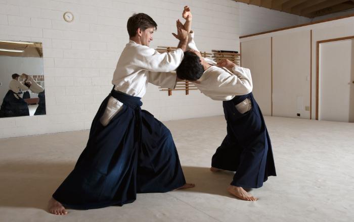 De nombreux arts martiaux tirent leur origine du Japon