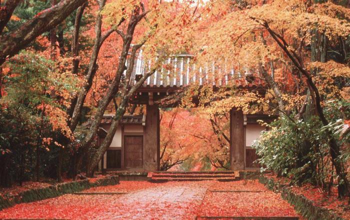Temple à l'automne avec feuilles d'érable