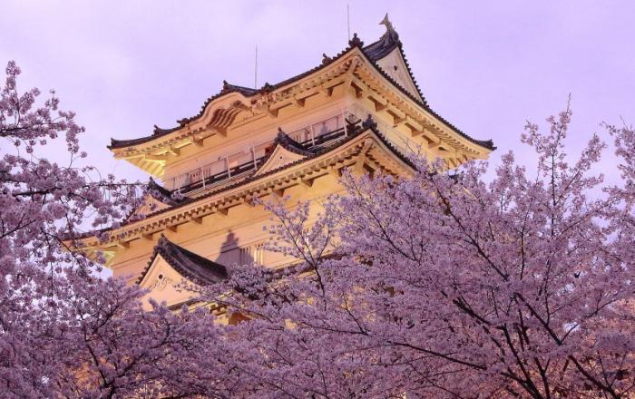 Chateau sous les arbres en fleurs