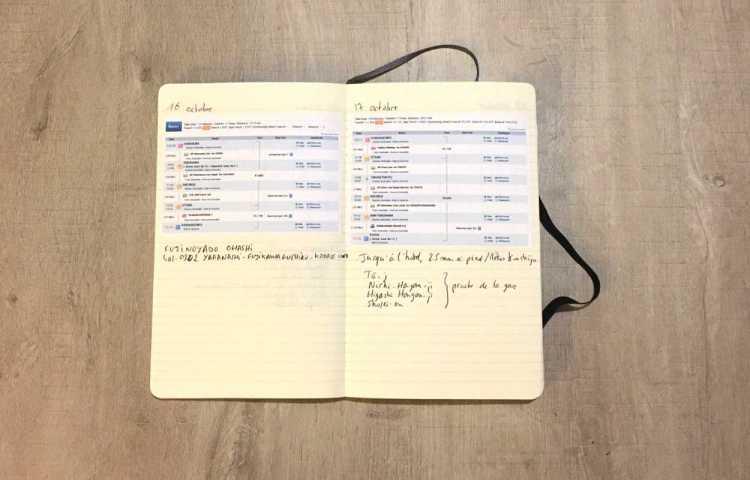 Bien organiser jour par jour son voyage au Japon