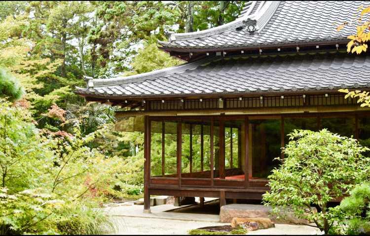pourquoi partir au japon d couvrir tokyo et la culture japonaise. Black Bedroom Furniture Sets. Home Design Ideas