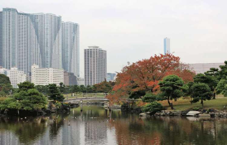 Hama Rikyu, un grand jardin japonais entre les gratte-ciels de Tokyo