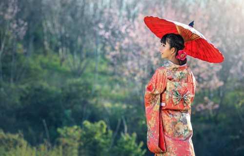 4 bonnes raisons de visiter le Japon !