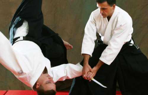 Partir au Japon pour découvrir l'Aikido