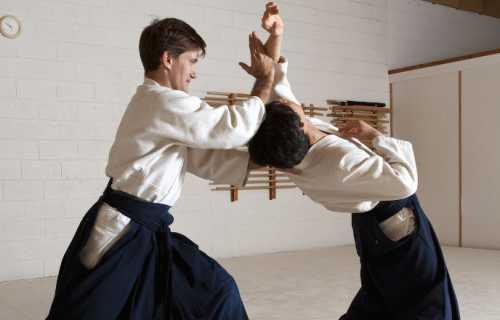 Les 6 principaux arts martiaux dans la culture du Japon