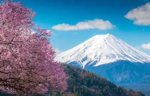 Découvrir le Japon en croisière