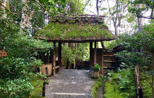 Gio-ji, l'autre fabuleux temple de mousse à Kyoto