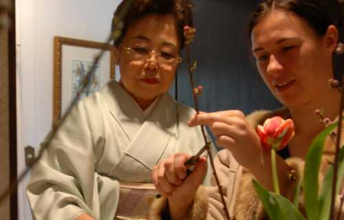 Ikebana : l'art traditionnel de l'arrangement floral japonais