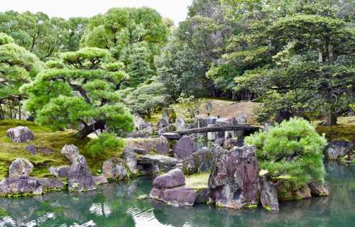 Les jardins japonais : définition et différents types