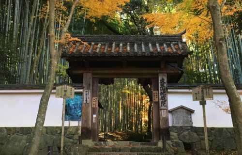 Jizo-in, un temple méconnu à l'Ouest de Kyoto que vous devez absolument visiter
