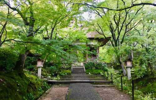 Jojakko-ji, un temple d'une grande sérénité