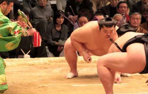 Voyage au Japon : les choses insolites à faire