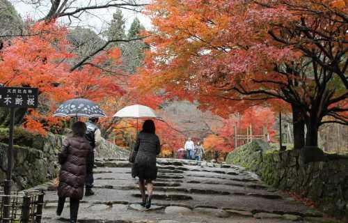 Partir au Japon à l'automne : l'autre saison idéale