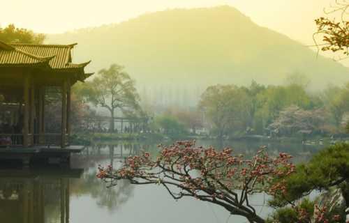Les beaux paysages du Japon à voir absolument