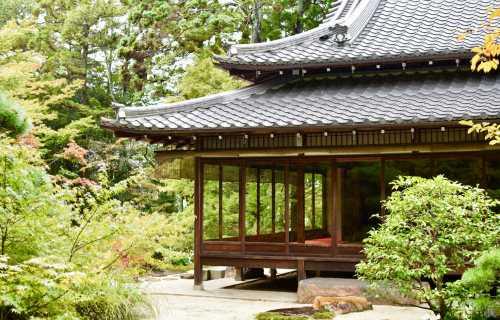 Pourquoi partir au Japon : découvrir Tokyo et la culture japonaise