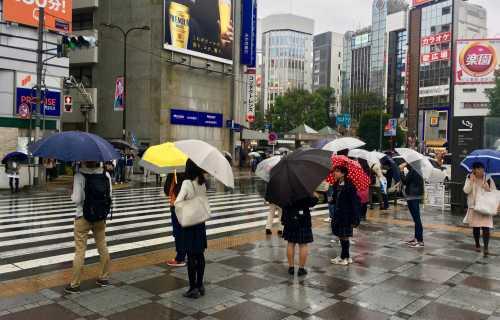 Partir au Japon pendant la saison des pluies
