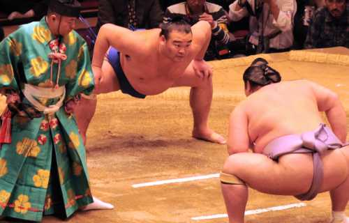 Sumo au Japon : origines et rituel de cet art martial