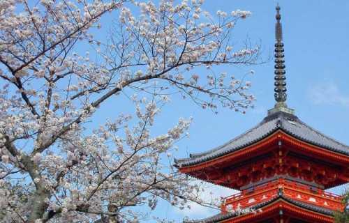 Visiter le Japon et découvrir la culture. Nos conseils de voyage.
