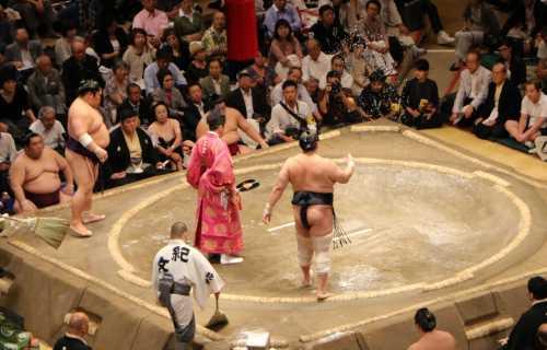 Quand partir au Japon pour voir des combats de sumos ?