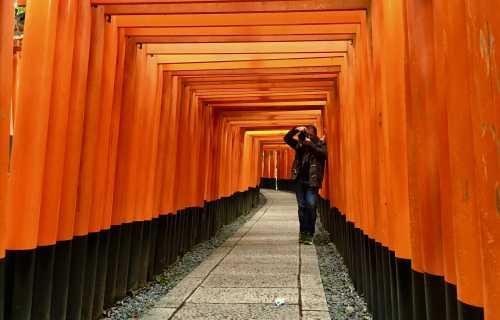 Partir seul au Japon : les questions essentielles