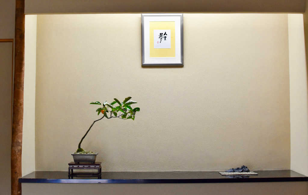 Bonsai d'arbre fruitier exposé dans un tokonoma d'automne