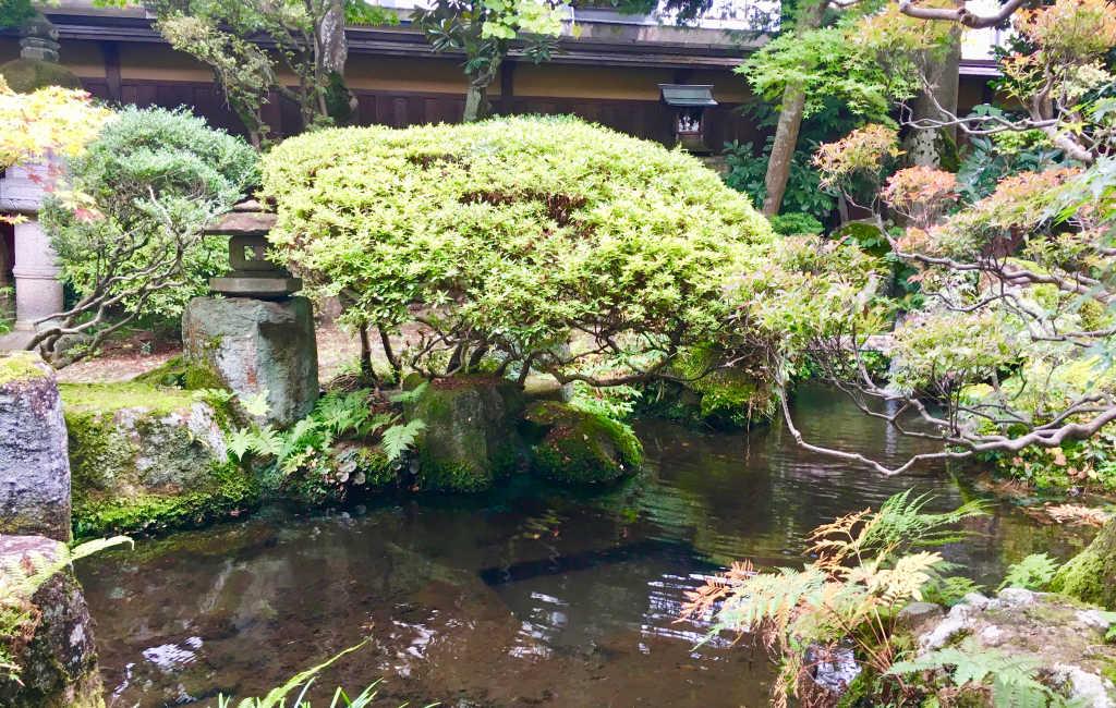 Vue sur le jardin japonais, depuis la salle de restaurant du ryokan