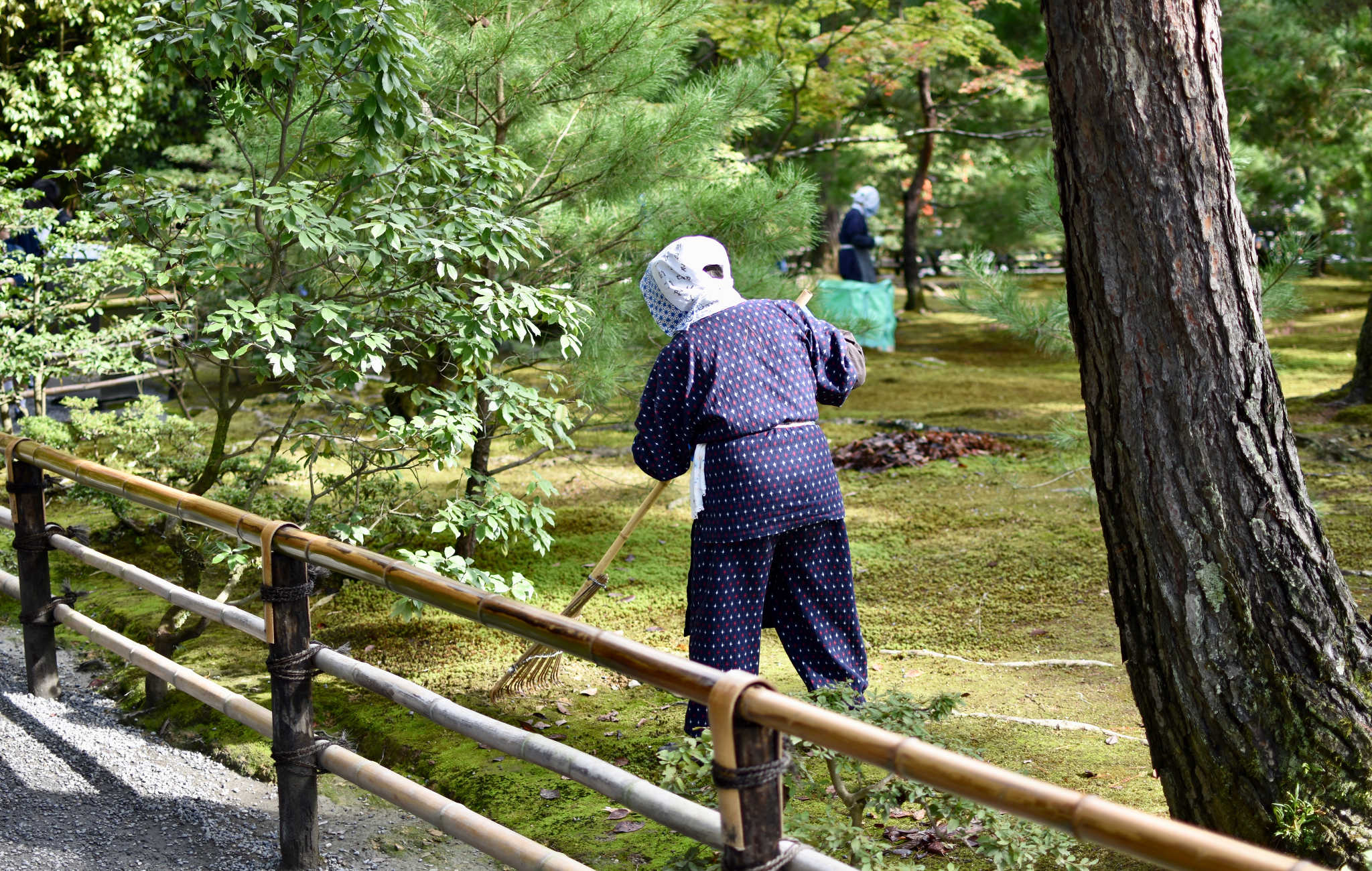 Des japonaises ramassent toutes les feuilles mortes dans ce jardin