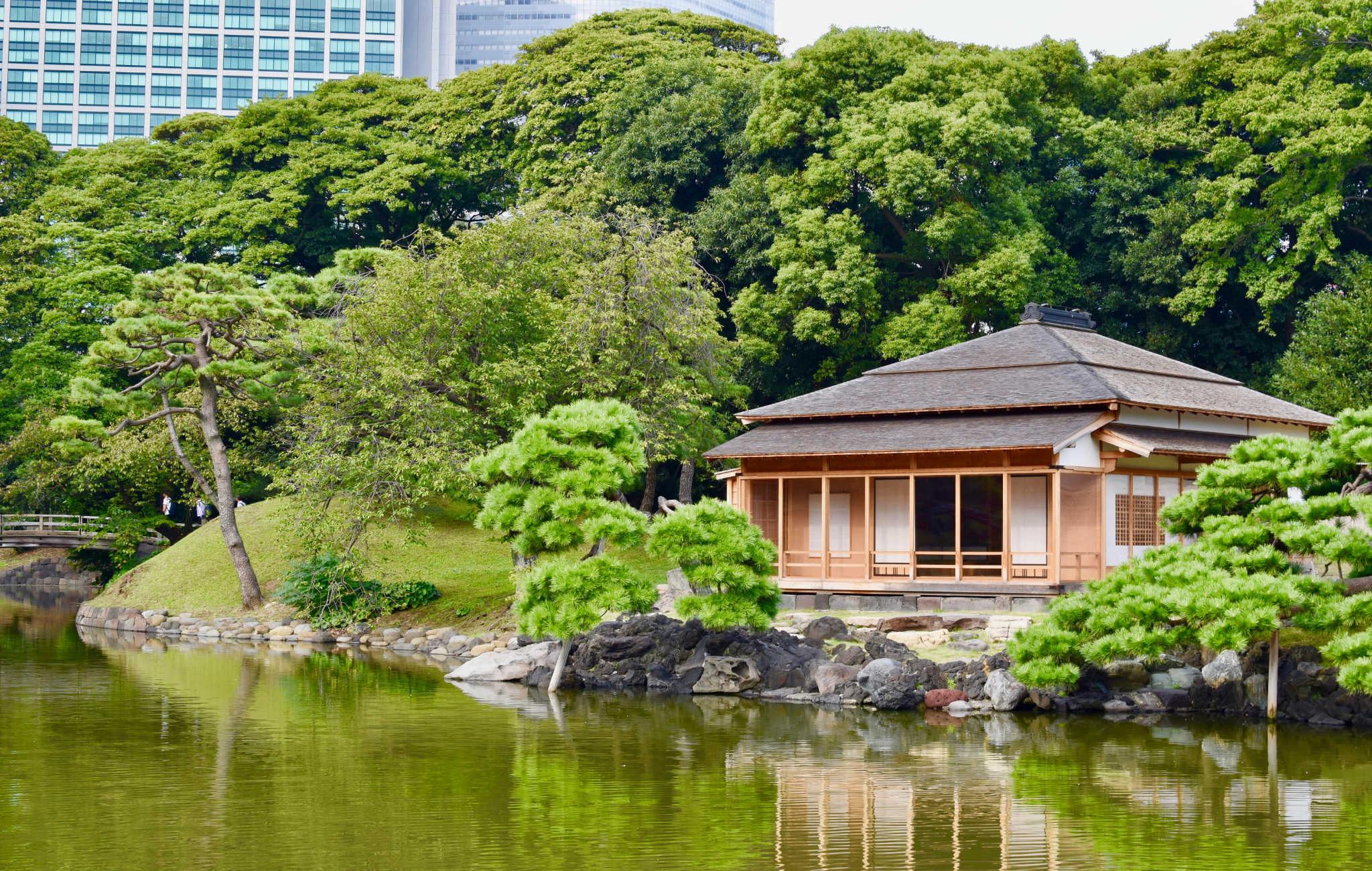 Hama Rikyu est un grand parc entouré de gratte-ciels au centre de Tokyo
