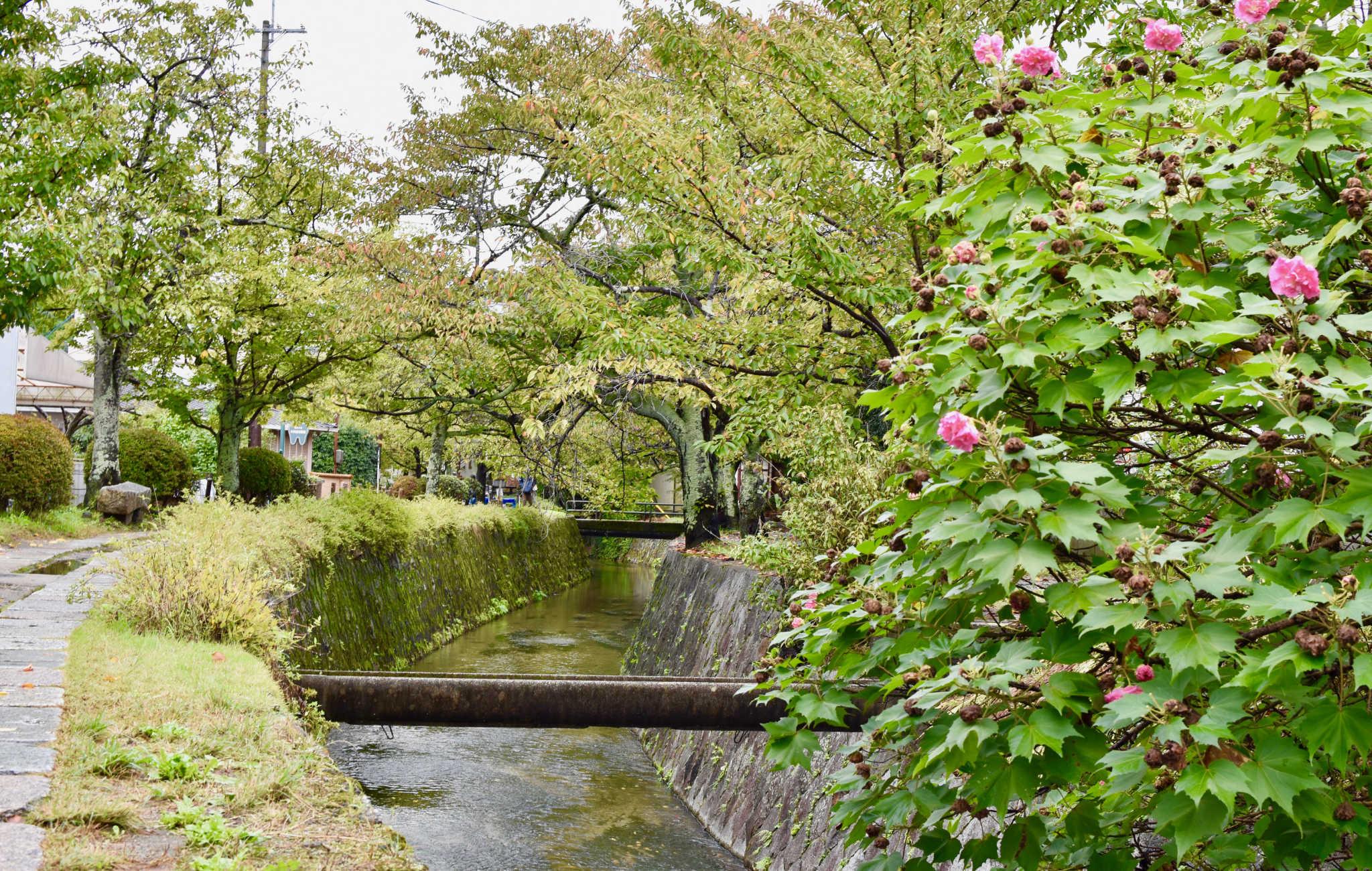 La promenade en bordure du canal est une détente paisible