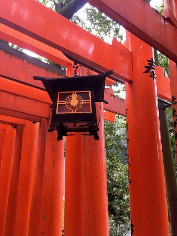 Une jolie petite lanterne japonaise