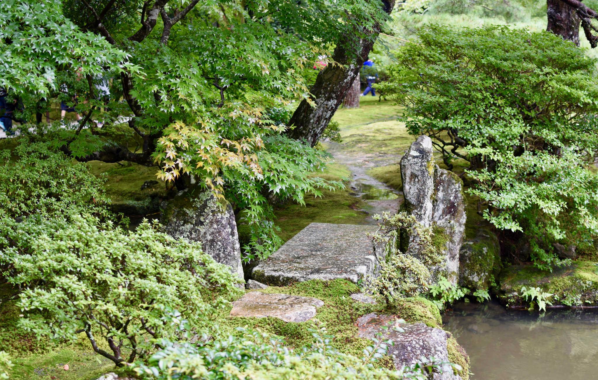 De petits ponts enjambent des ruisseaux