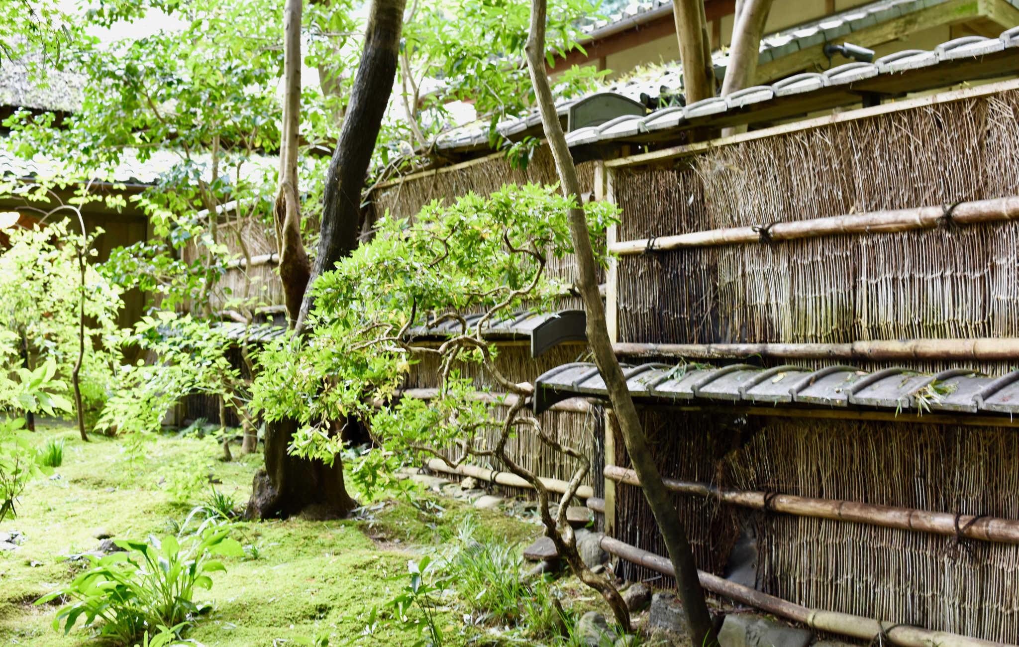 Des clôtures en bambou délimitent le jardin