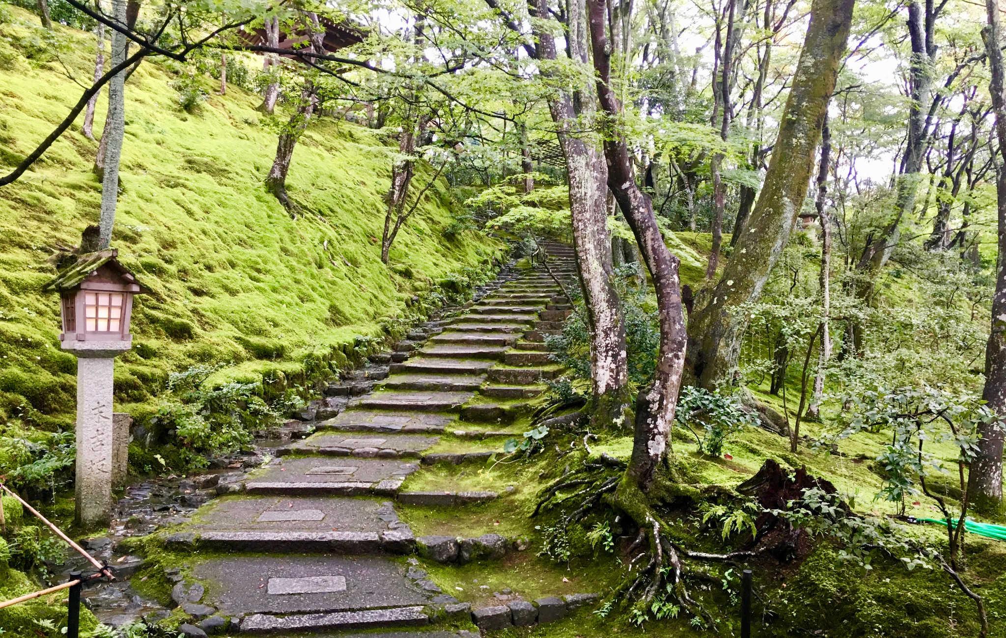 On visite le temple à travers divers chemins au milieu d'une végétation verdoyante