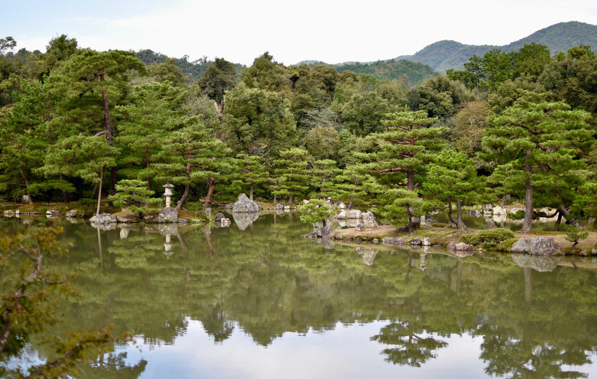 Autour du temple, un lac et ses nombreux pins taillés