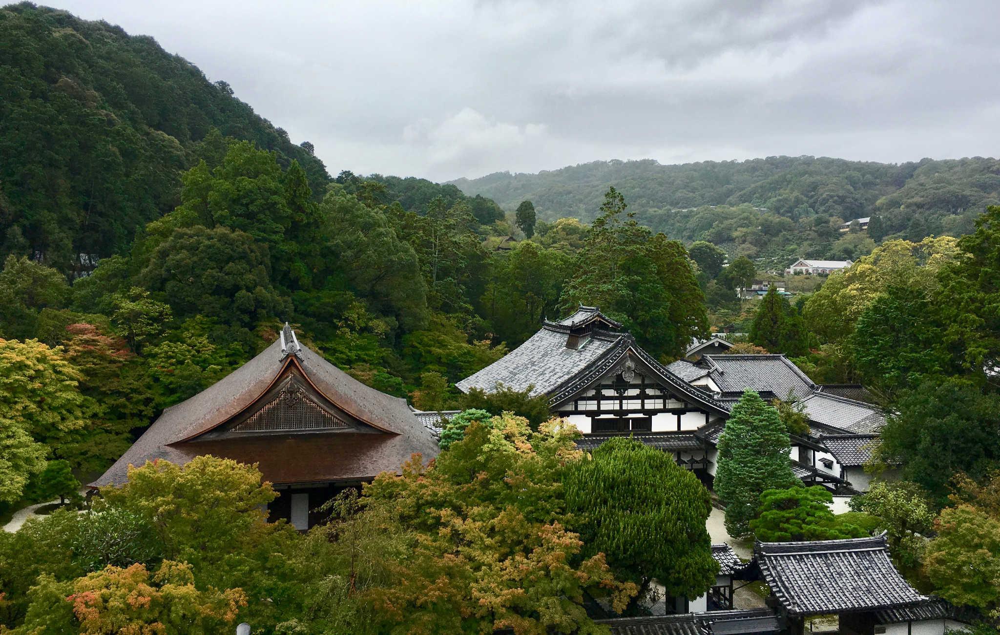 Vue sur les autres bâtiments du temple et la forêt environnante