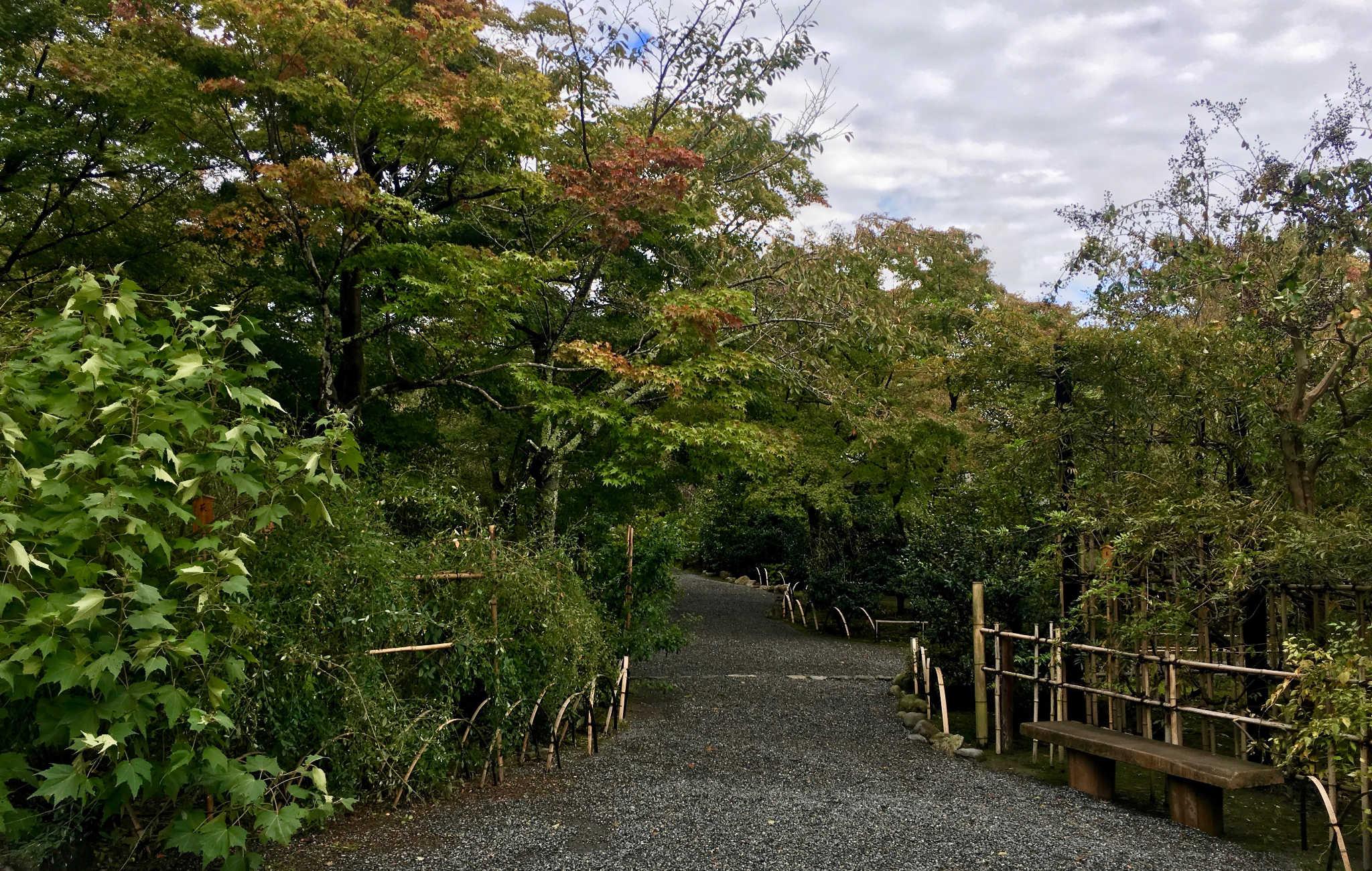 La visite du temple commence par un grand jardin et ses allées bordées d'arbres