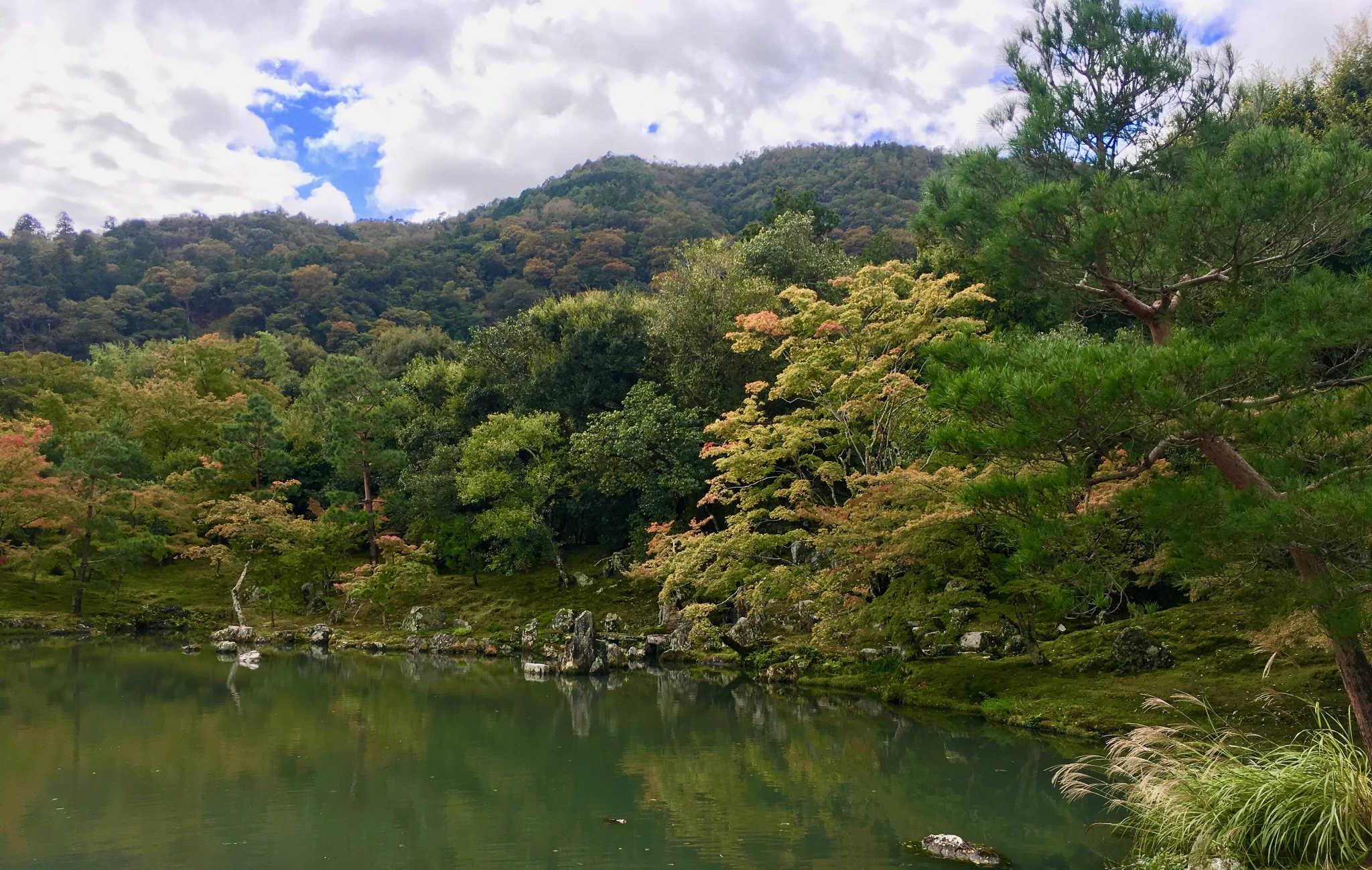 Les érables commencent à prendre leurs couleurs d'automne