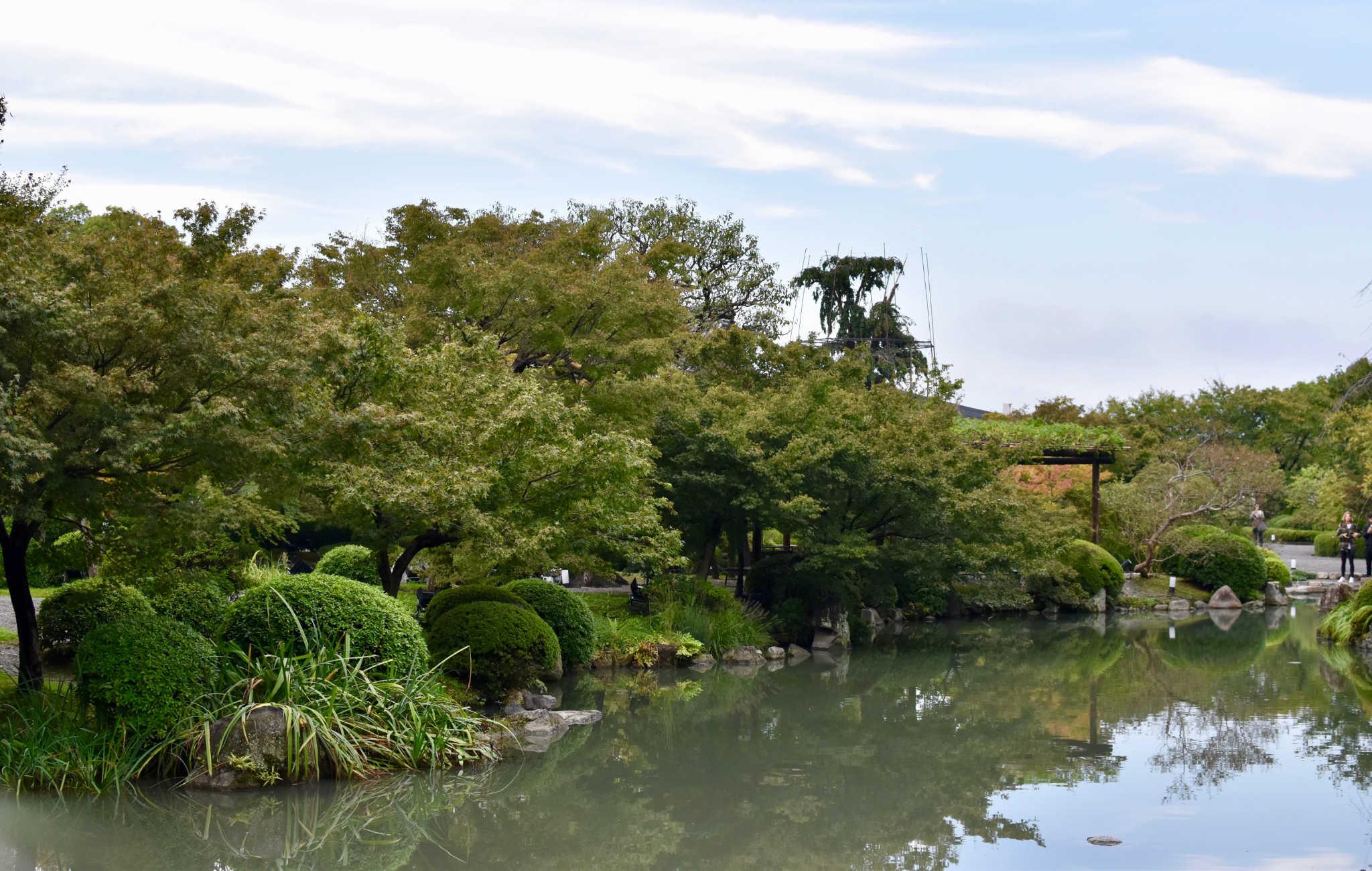 Le jardin est organisé autour d'un plan d'eau