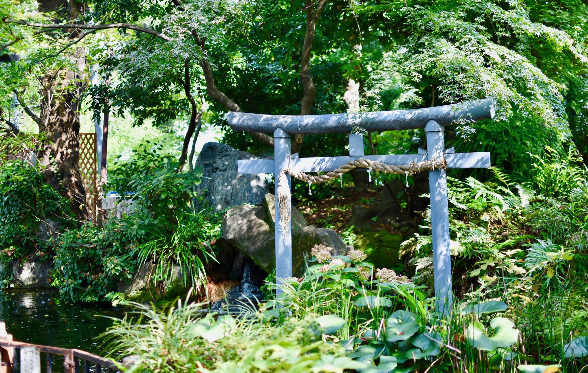 Les torii sont parfois noyés dans la végétation