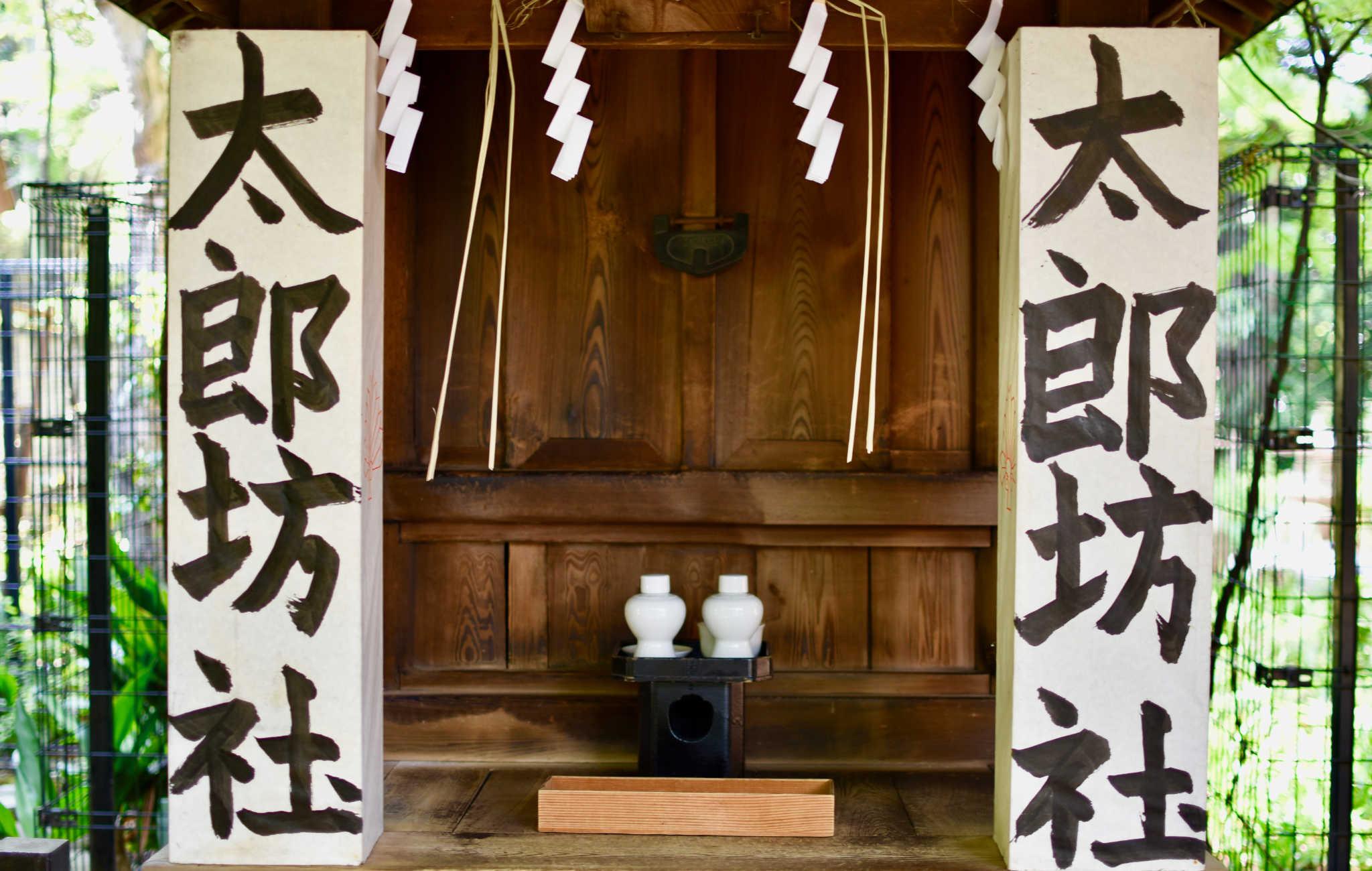 Un autel avec des offrandes