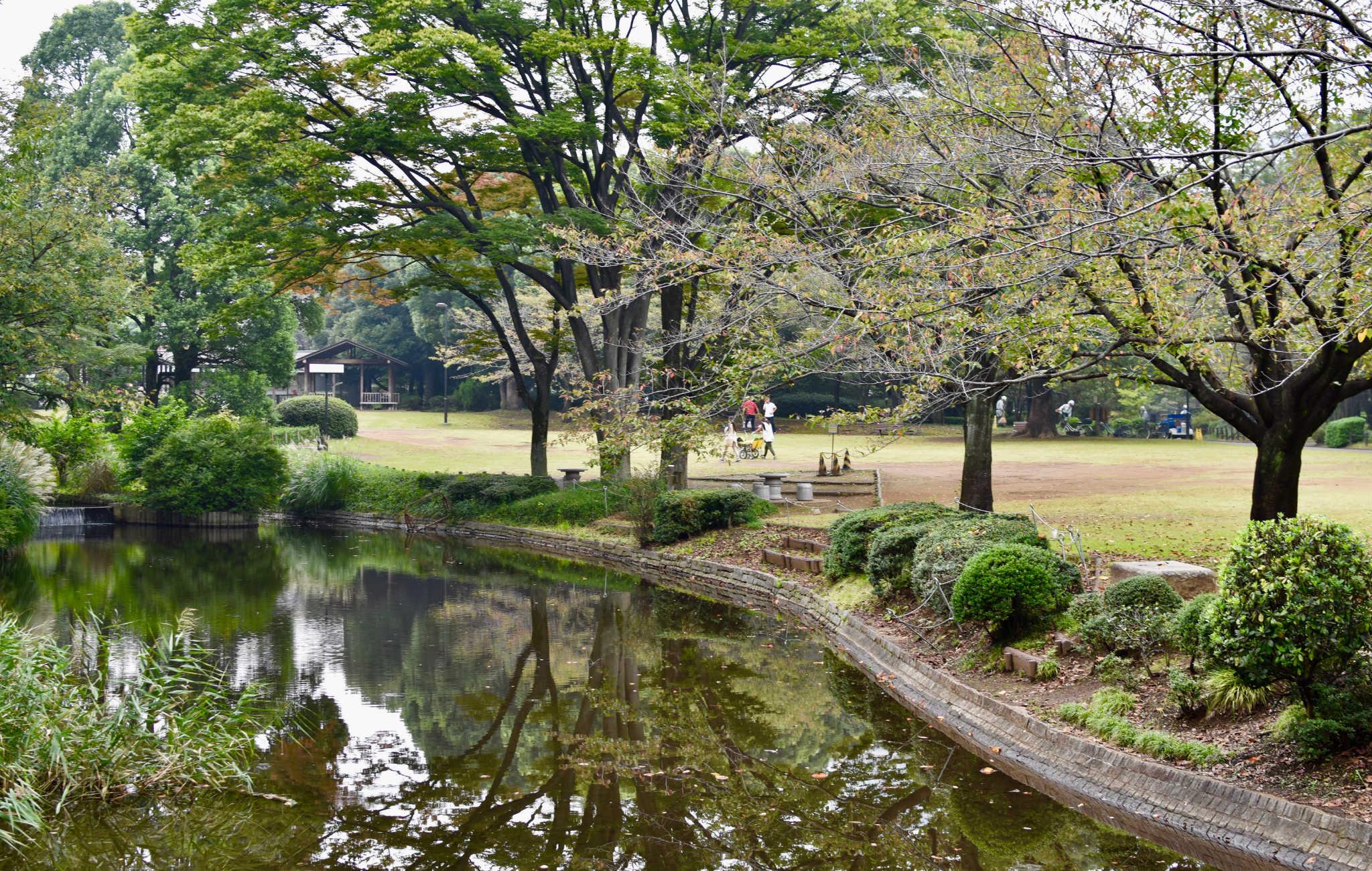 Une jolie balade au coeur du parc arboré de Kinanomaru