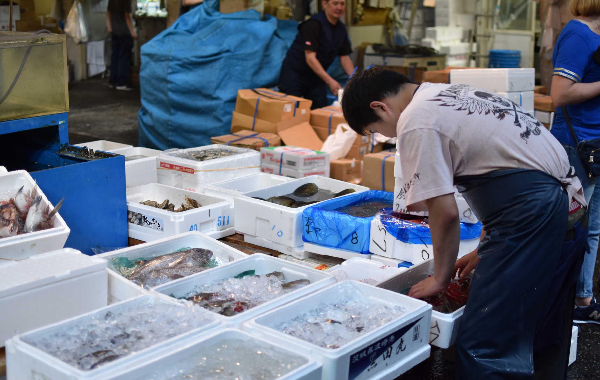 Le plus grand marché au poissons du monde, réservé aux professionnels mais accessibles aux touristes