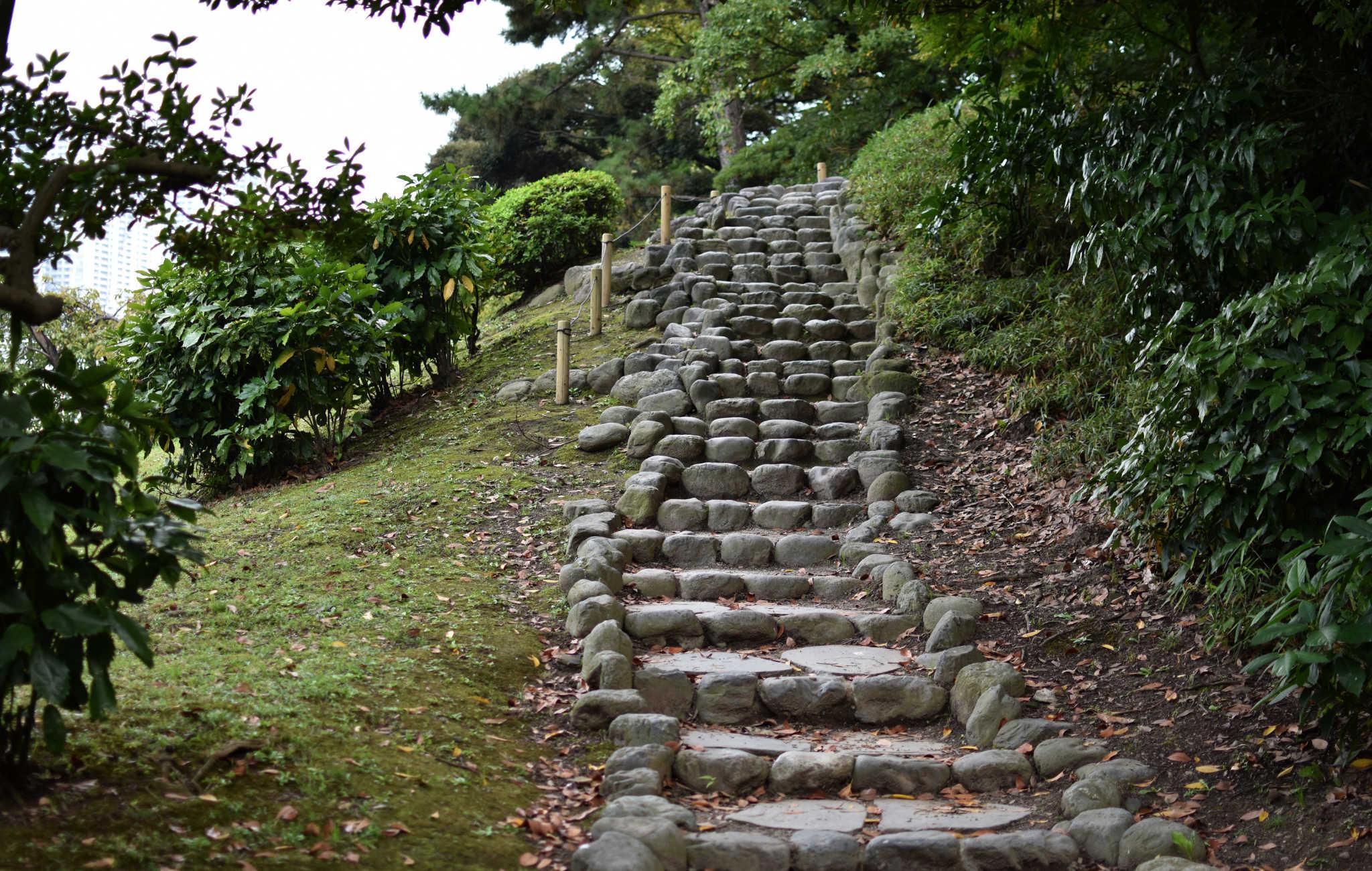 Un escalier de pierre permet d'accéder à un point de vue en haut du parc