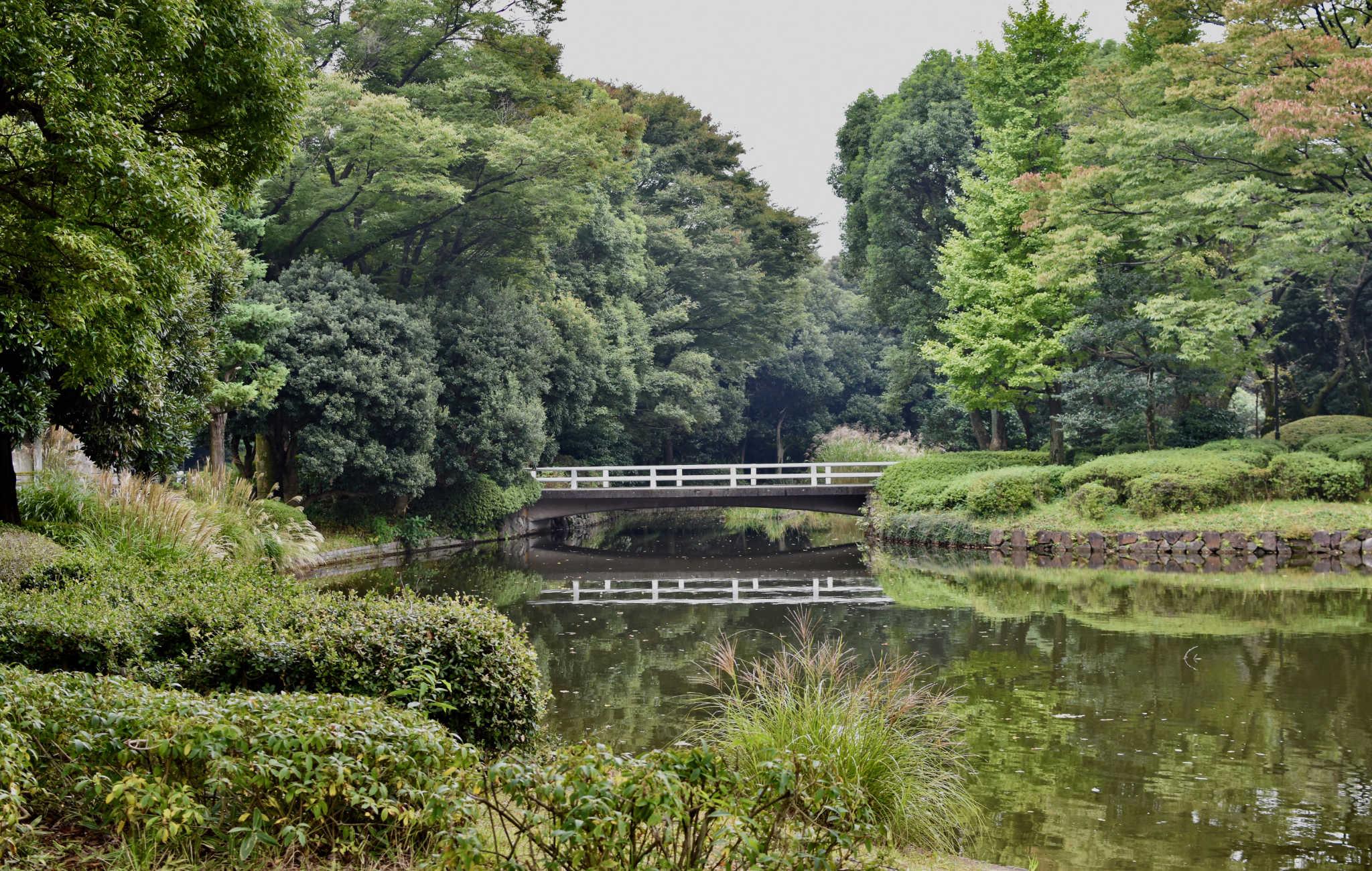 Des pont emjambent le lac