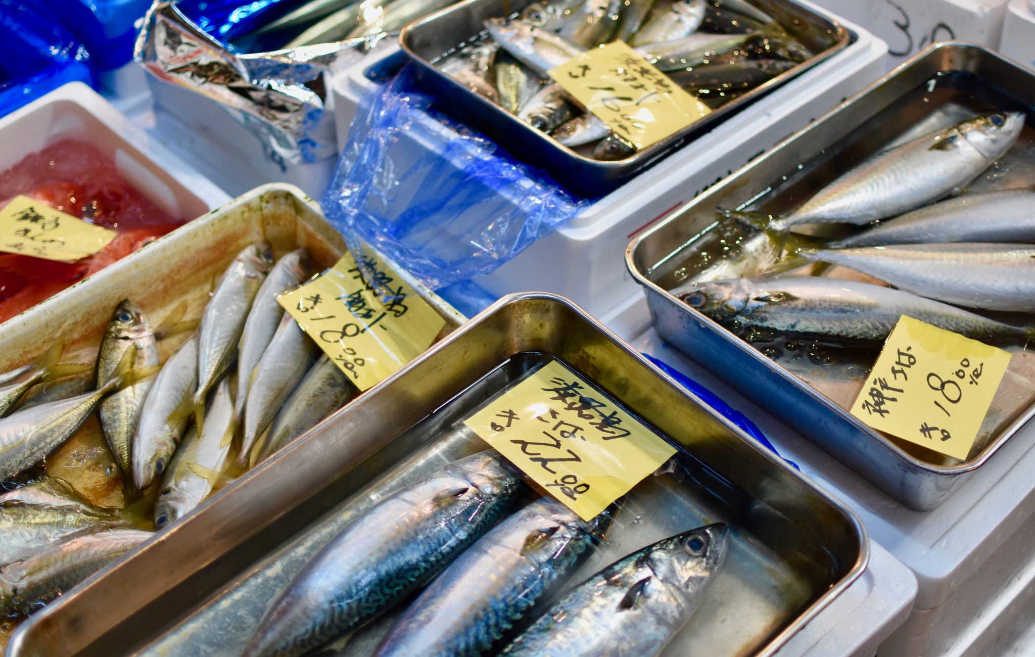 Il y a beaucoup de types de poissons différents