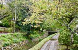 Visiter le chemin de la philosophie à Kyoto
