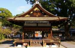 Sanctuaire Hirano-jinja et la fête des cerisiers Sakura