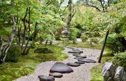 Jardins et parc à visiter à Kyoto